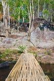Bamboo bridge in national park at noon , Thailand. Bamboo bridge in national park at noon Royalty Free Stock Image