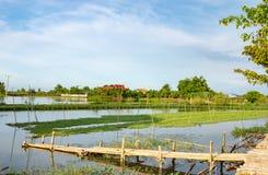 Bamboo bridge over the canal. stock photo