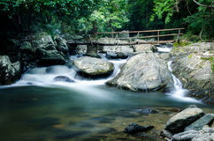 Bamboo bridge Royalty Free Stock Photo