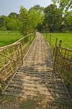 Bamboo Bridge over a Rice Paddy Royalty Free Stock Images