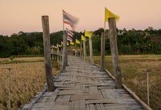 Bamboo bridge pass rice field at sunset Stock Images