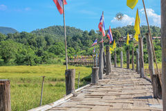 Bamboo bridge. Place name Sutongpe Bridge Royalty Free Stock Image