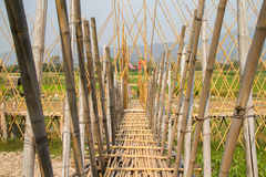Bamboo bridge. In Pua Nan Thailand Stock Photos