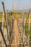 Bamboo bridge. In Pua Nan Thailand Royalty Free Stock Photos