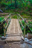 The bamboo  bridge in rain forrest Stock Photos