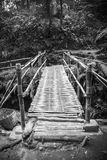 The bamboo  bridge in rain forrest Royalty Free Stock Photos