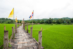 Bamboo bridge on rice field Stock Photos