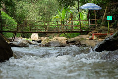 Bamboo Build Watercourse Bridge Stock Photography