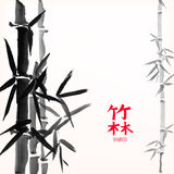 Bamboo bunch and leaves, chinese style painted card design template, background with copy space. Chinese calligraphy hieroglyphs translation: bamboo forest Royalty Free Stock Images