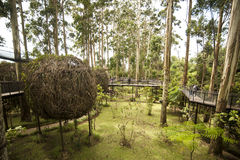 Bamboo Cafe. One of the cafe in dusun bamboo bandung indonesia Royalty Free Stock Photo