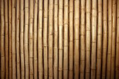 Bamboo cane row arrangement background Royalty Free Stock Photos