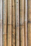 Bamboo cane wall texture Royalty Free Stock Photography