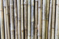 Bamboo cane wall texture Royalty Free Stock Photos