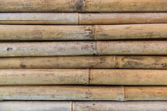 Bamboo cane wall texture Stock Photos