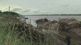 Bamboo canes, mekong, cambodia, southeast asia stock footage