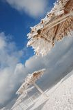 Bamboo canopies on the beach in winter Royalty Free Stock Images