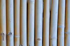 Bamboo with chain Royalty Free Stock Photos