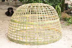 Bamboo chicken coop. In thailand Stock Images