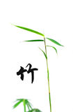 Bamboo and chinese calligraphy royalty free stock image
