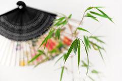 Bamboo and chinese fan Stock Photography