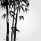 Bamboo in Chinese style. Stock Image