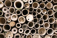 Bamboo Circles. A look inside bamboo poles stock photography