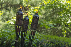 Bamboo Citronella Torch. Es to repell mosquitoes and other insects Stock Image