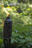 Bamboo Citronella Torch Royalty Free Stock Photography