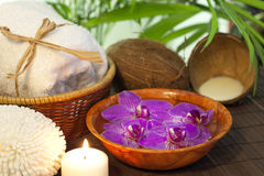 Bamboo and coconut milk spa cosmetic still life Royalty Free Stock Images