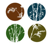 Bamboo Collection. Bamboo hand drawing collection,made into four circle logos Royalty Free Stock Photo