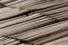 Bamboo raft flooring. Bamboo, a common material of a raft flooring at the waterfront in Asia and tropical countries Stock Photography