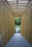 Bamboo corridor Royalty Free Stock Photos
