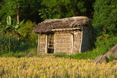 Bamboo cottage on harvested paddy field Stock Photography