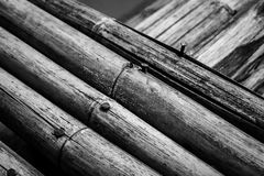 Bamboo. Cross bamboo in black and white royalty free stock image