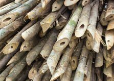 Bamboo cross slice Stock Images