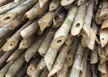 Bamboo cross slice Stock Photography