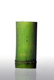 Bamboo cup. Isolated on white background Stock Image