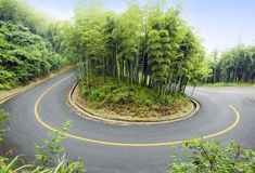 Bamboo and curved road Royalty Free Stock Image
