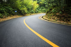 Bamboo and curved road Stock Photography