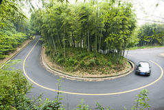 Bamboo and curved road Royalty Free Stock Photography