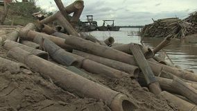 Bamboo, cut,  cambodia, southeast asia stock footage
