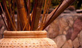 Bamboo Decor. Bamboo sticks planted in pot Stock Image