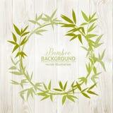 Bamboo decorative frame Royalty Free Stock Image
