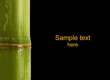 Bamboo detail background Royalty Free Stock Photography