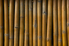 Bamboo detial fence background beautiful wall. Bamboo fence background wall  pattern Royalty Free Stock Photography