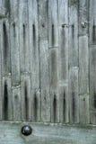 Bamboo door Stock Images