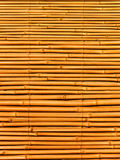 Bamboo dry. Abstract background from stalks of a dry bamboo Royalty Free Stock Photo
