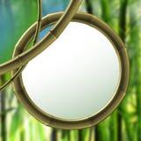 Bamboo element. Background bamboo elements (Frame Custom royalty free illustration