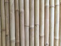 Bamboo exture Stock Image