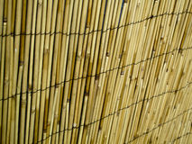 Bamboo Fence Stock Photo